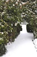 Warza im Winter 2010_5